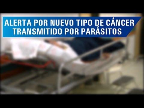 Chemioterapia papilloma vescicale