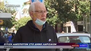 Σίτιση αδέσποτων στο Δήμο Λαρισαίων 1 4 2020