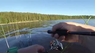 Рыбалка на озере пионерское в ленинградской области
