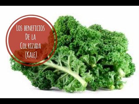 17 BENEFICIOS DE LA COL RIZADA ( KALE). NUTRIVLOGS. ASESORIA NUTRICIONAL
