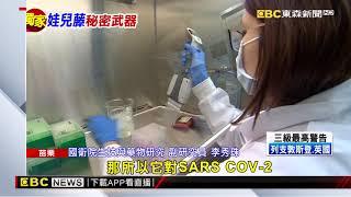 SARS也怕它!國衛院研究「娃兒藤」對抗武肺病毒