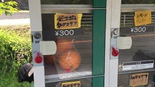 みかんの自動販売機広島県・熊野町