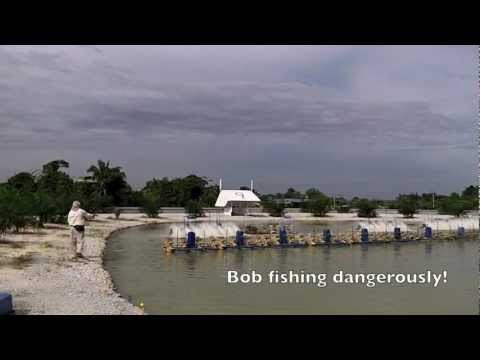 Fly fishing at the Natural Exotic Fish Pond Rawang Malaysia with Bob