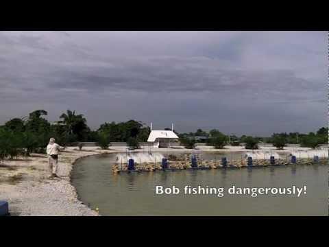 Fly fishing at the Natural Exotic Fish Pond Rawang Malaysia with Bob