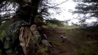 Infanterister i skovbunden