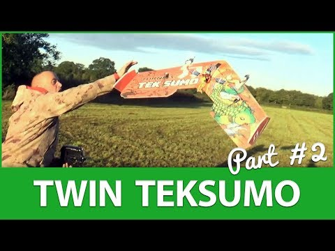 twin-teksumo-the-maiden-part-2--meet-the-twinsumo