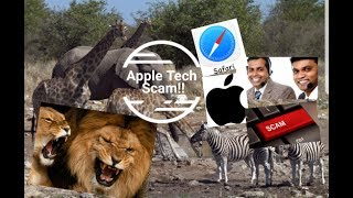 Apple Tech Support Scam Safari Confusion (with subtitles).