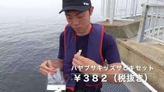 愛知県豊浜漁港釣り桟橋でサビキ釣り