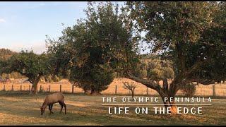 The Olympic Peninsula: Life on the Edge