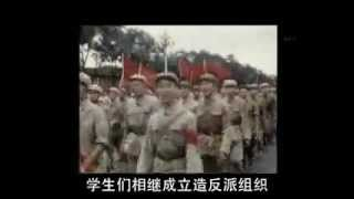 【cn】文化大革命 40年後の証言