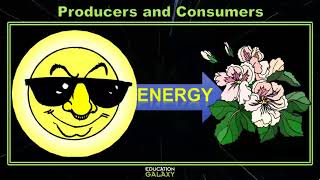 4th Grade - Science - Producers and Consumers - Topic Overview
