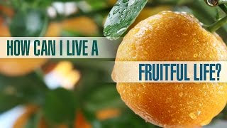 How Can I Live a Fruitful Life?