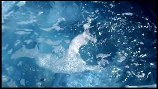 Переливной спа бассейн Otway-6 Landscape (225*190*98) от компании Comfort SPA - бассейны и СПА бассейны, комплектация зон отдыха - видео