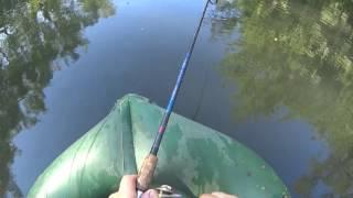 Рыбалка в тульской области красивая меча