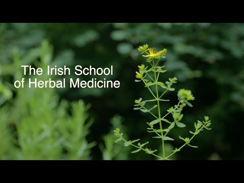 Professional Training in Herbal Medicine