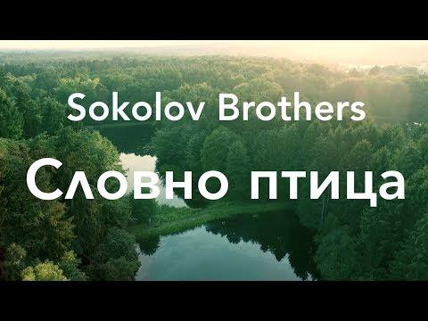SokolovBrothers - Словно птица
