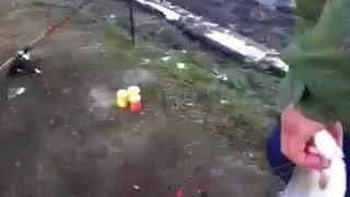 Платная рыбалка в высоковском
