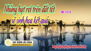 Suy Niệm Lời Chúa, Thứ Tư 24072019