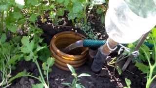 Полив виноградника видео