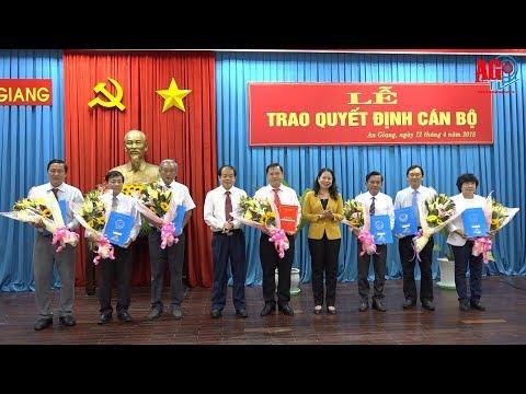 Trao quyết định cán bộ thuộc diện Ban Thường vụ Tỉnh ủy quản lý