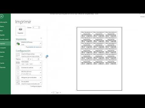 Formato Excel etiquetas activos fijos