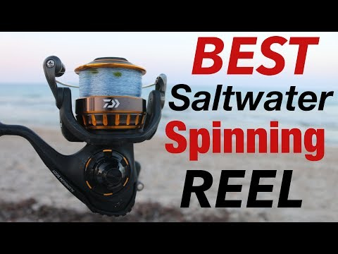 A LEGEND Reborn- Daiwa BG REEL Review (BEST Saltwater Spinning Reel)