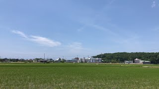 【生配信のおっさん】〜もうすぐ田村神社〜