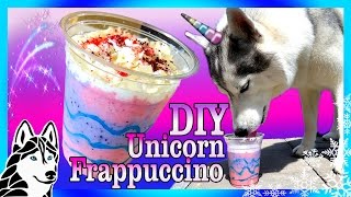 DIY UNICORN FRAPPUCCINO FOR DOGS  | DIY Dog Treats | Snow Dogs Snacks 72