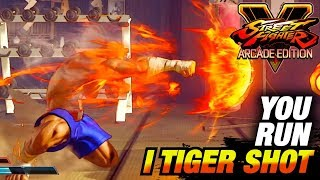 SFV AE * You Run, I TIGER SHOT / Sagat Highlights