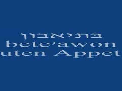 סרטוני וידאו שפות
