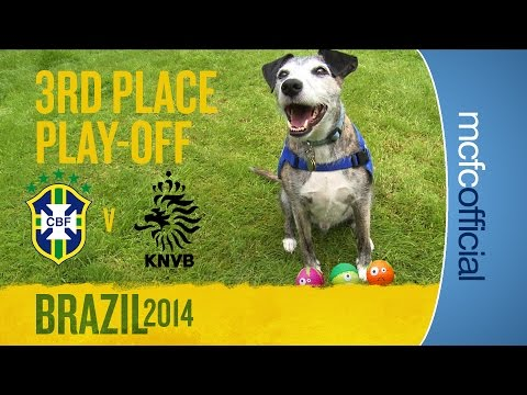 DOUGIE THE DOG PREDICTS | World Cup 3rd Place Play-Off