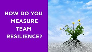 The five components of a high-performing resilient team