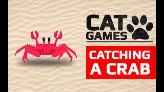 CAT GAMES - 🦀 CATCHING A CRAB (VIDEOS FOR CATS TO WATCH) 60FPS