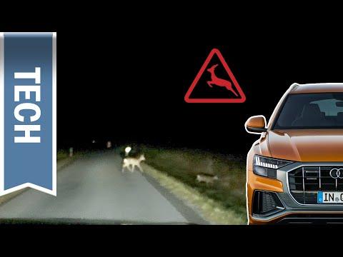 HD Matrix LED-Scheinwerfer im Audi Q8: Nachtfahrt mit starkem Nebel, Allwetterlicht & Wild Warnung