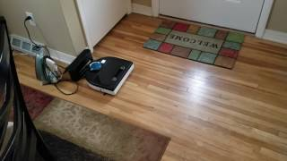 Neato robot vacuum cleaner. D80...I think?  Best purchase.