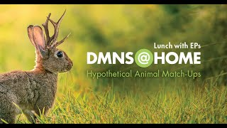 Lunch with the Educators Hypothetical Animal Match Up