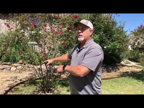 Sprinkler Repair And Installation Contractor In McKinney Shows Modifying Existing Irrigation System