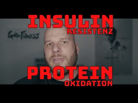 Insulin und Glukagon regulieren