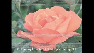 Lana Del Rey - Coachella - Woodstock In My Mind [Lyric Video]