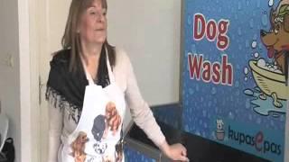 Praonica za pse u Beogradu