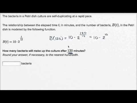 Exponential model word problem: bacteria growth (video) | Khan Academy