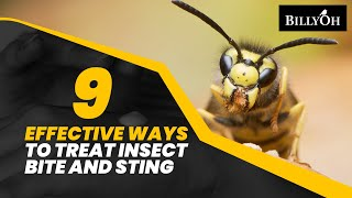 9 Effective Ways to Treat Insect Bites and Stings - Natural Remedies For People Who Loves Outdoors