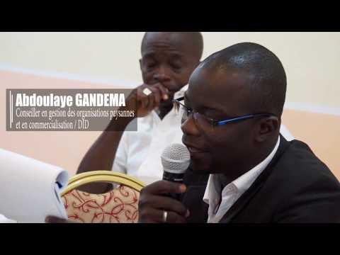 Vidéo Youtube - Crédit pour l'intensification de la production agricole (CIPA)