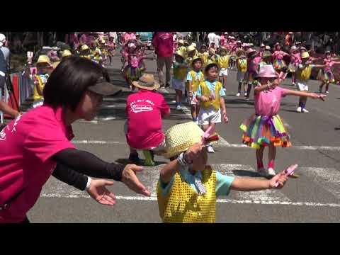 (学校法人)平成学園ひまわりあとむ幼稚園 第65回よさこい祭り