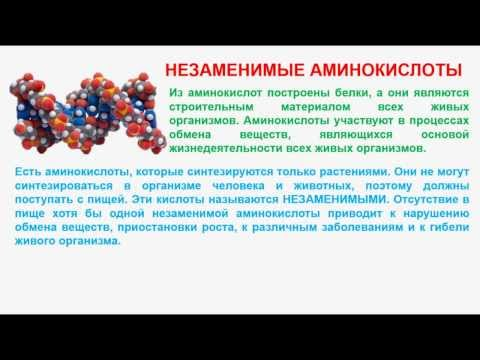 № 167. Органическая химия. Тема 26. Аминокислоты. Часть 3. Незаменимые аминокислоты