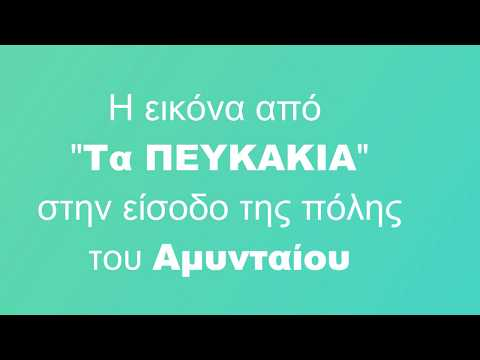 fb8aa5c92c4 Ειδήσεις - AERIAL YOGA ΜΑΘΗΜΑΤΑ ΠΡΟΣΦΟΡΑ ΑΠΟ... | Palo.gr