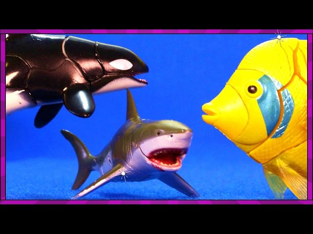 Surprise SHARK TOYS, Killer Whales, Sea Animals, Toy Sharks Eggs Youtube Video for Kids