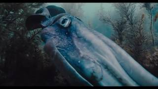 Voyage Of Time Official Trailer 1 2016  HD