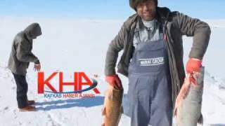 çıldır Gölünün Dev Balıkları Kafkas Haber Ajansı Www Kha Com Tr Kha