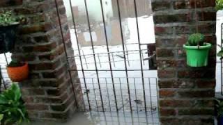 preview picture of video 'santa fe,inundacion barrio nueva pompeya'